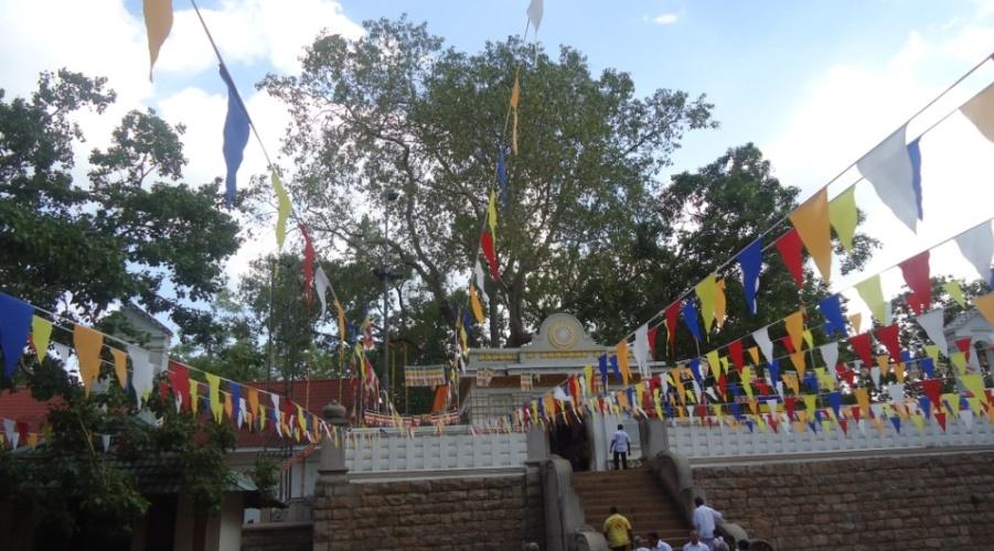 Shri Maha Bodiya at Anuradhapura